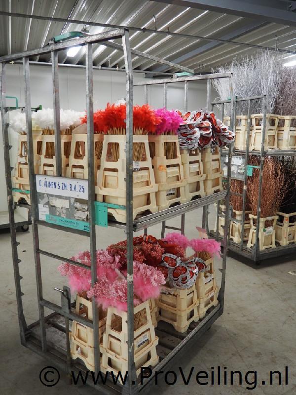 Faillissementsveiling voorraad en inventaris bloemengroothandel Vianen van Vliet te Ede