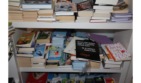Diverse boeken o.a. Waar ben ik nu beland?, 100% Nina - ca. 70 stuks