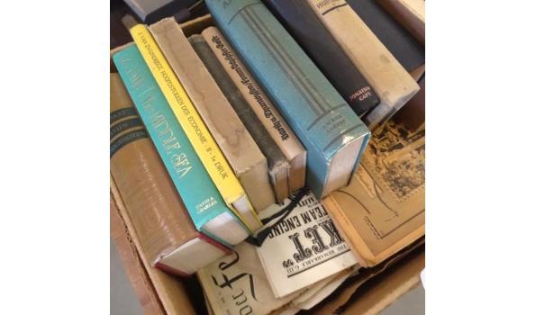 Partij antieke en oude boeken in doos