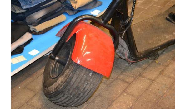 Elektrische Bigwheel step