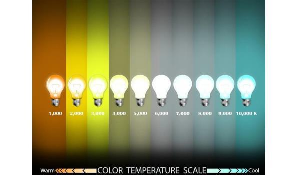 10 x Venus 50w LED Breedstraler - waterdicht IP65 - 6500K koud wit.