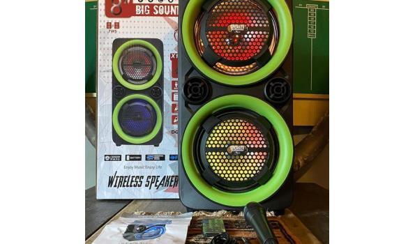 Big Sound Draadloze speaker 65dB