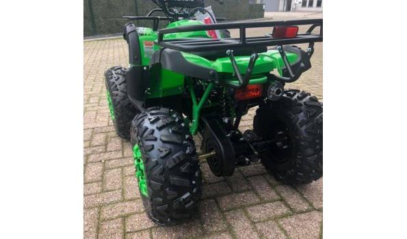 KXD Quad 125cc