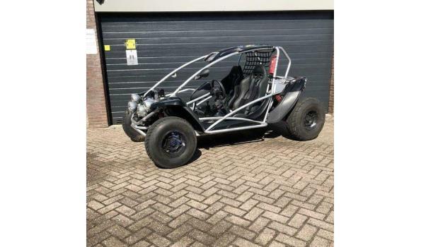 PGO buggy BR500 piaggio motor