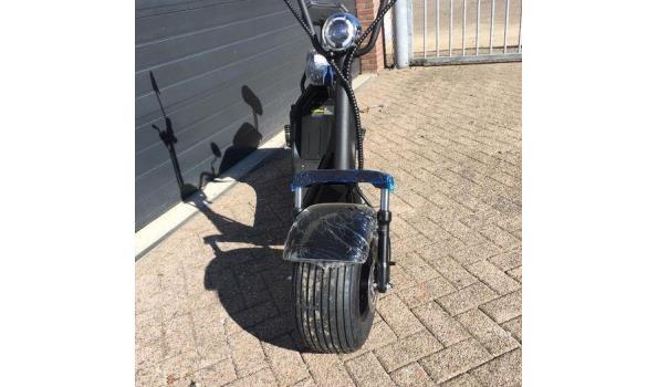 Elektrische bigwheel scooter 1000Watt