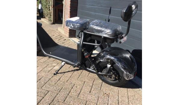Elektrische bigwheel scooter 1500W