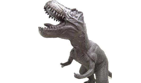 Grote dinosaurus