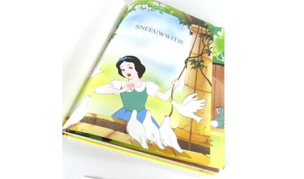 Disneys mooiste sprookjesschat