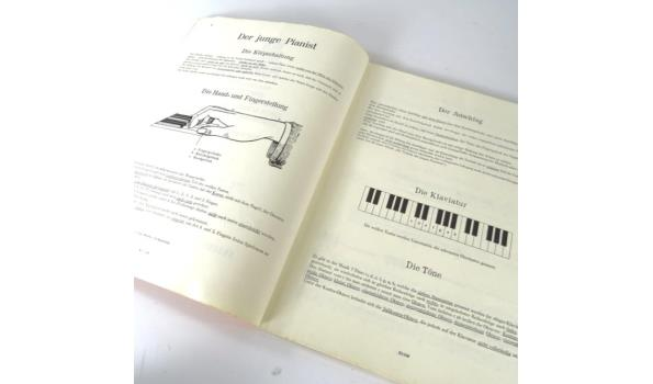 Der junge pianist