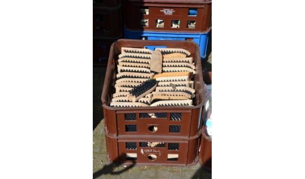 Schoenenborstels - aantal ca. 160 stuks