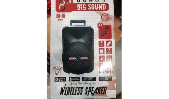 Big sound speaker - 8inch