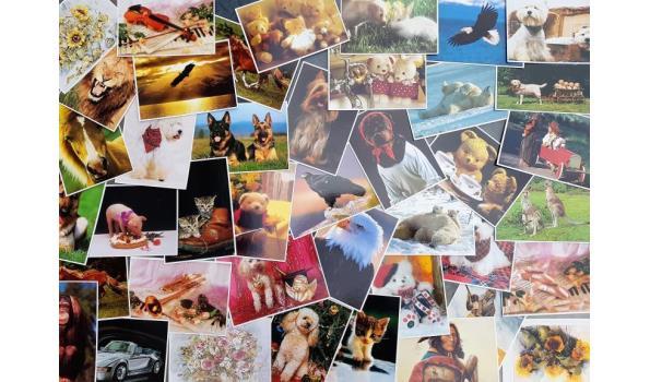 Ansichtkaarten, 500 stuks