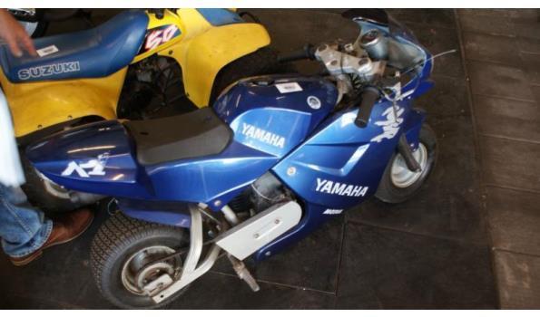 Spiksplinternieuw Yamaha mini bike | ProVeiling.nl BK-19