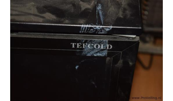 Tefcold koeling - 90x65x90cm
