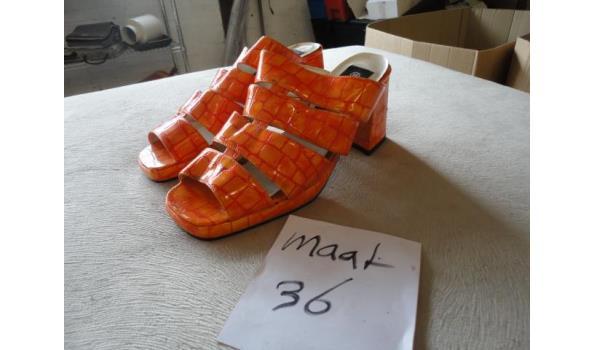damesschoenen maat 36