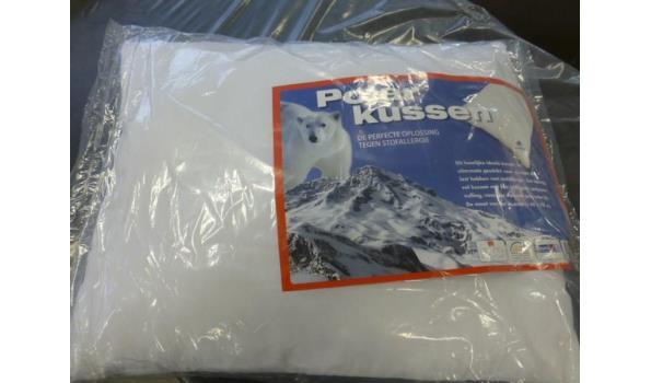 Polar kussen