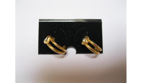 ring oorbellen