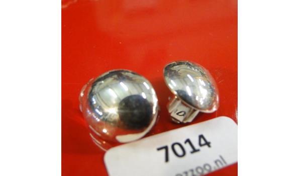 Zilveren oorclips