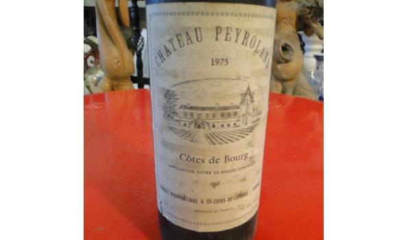 Château Peyroland Côtes de Bourg 1975