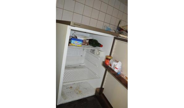 Bauknecht koelkast, tafelmodel