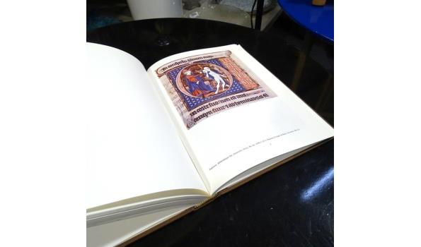 Waanzin in de middeleeuwen