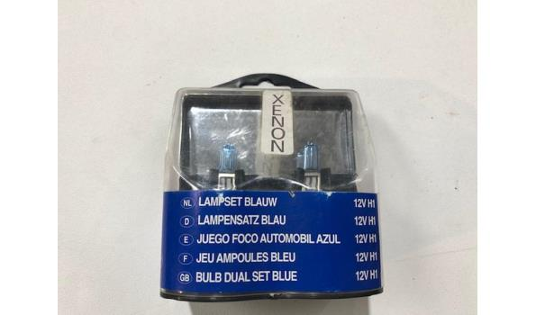 Lampenset Xenon H1 12 volt