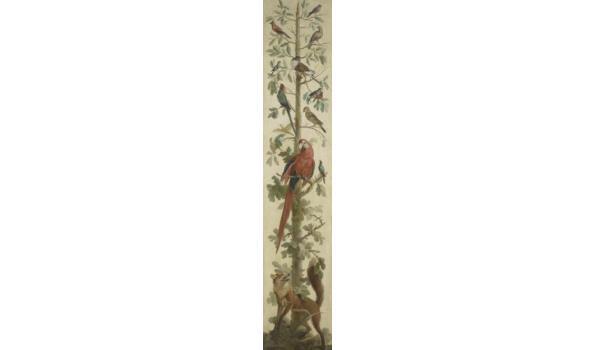 Planten en dieren op forex, 150cm