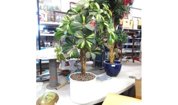 Ficus kunstplant in kunstof pot